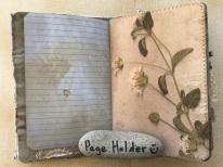 Sunshine and Swan Lake Journals (18)