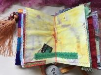 Sunshine and Swan Lake Journals (6)