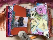 Sunshine and Swan Lake Journals (7)