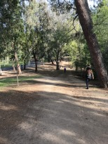 Exploring Clark Regional Park (1)