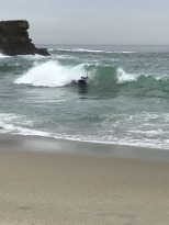 Surf's Up at Aliso Beach (2)