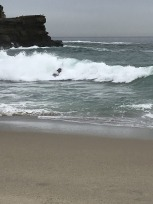 Surf's Up at Aliso Beach (4)