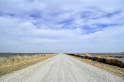 Sights From Kansas - Cheyenne Bottoms (12)