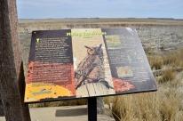Sights From Kansas - Cheyenne Bottoms (6)