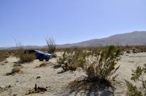 Solo Car Camping, Anza-Borrego, part 2 (5)